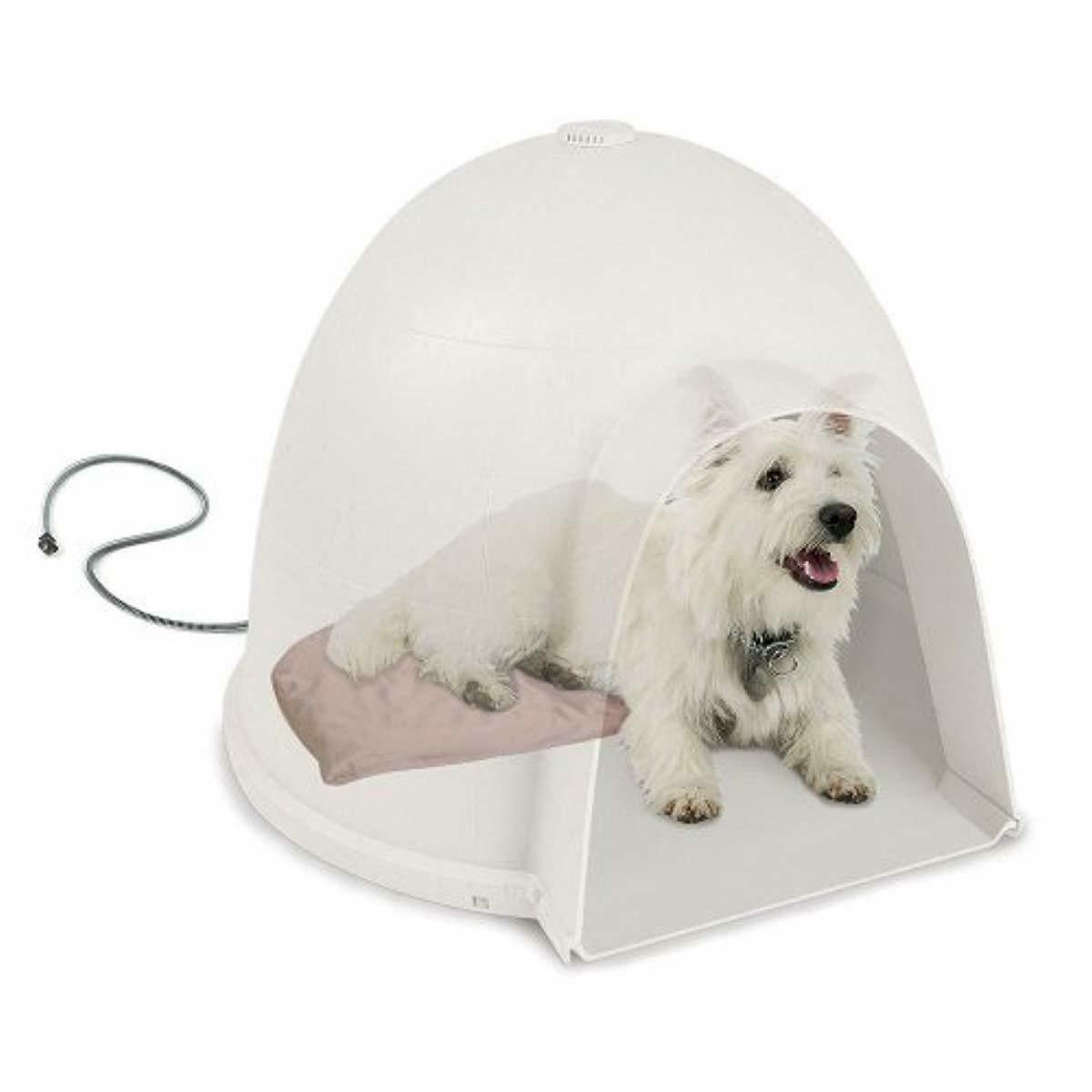 Igloo Soft Heated Dog Dome Heating Pad Size: