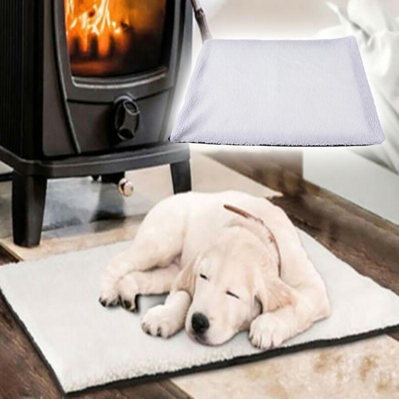 large warm self heating cat dog puppy