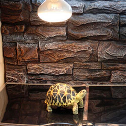 Pet Tank Heating Warming Heat Pad Stock